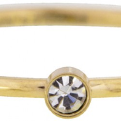 Charmins ring Goud staal Bright shine maat 17 R432 - 4001600